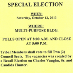 Special Election October 12, 2013